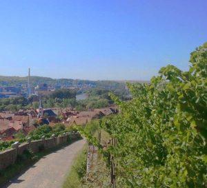 Blick ins Maintal - von Frickenhausen Richtung Ochsenfurt